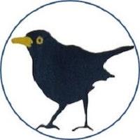 Bbird circular