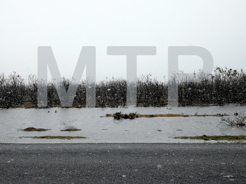 Mtp heathland LORES