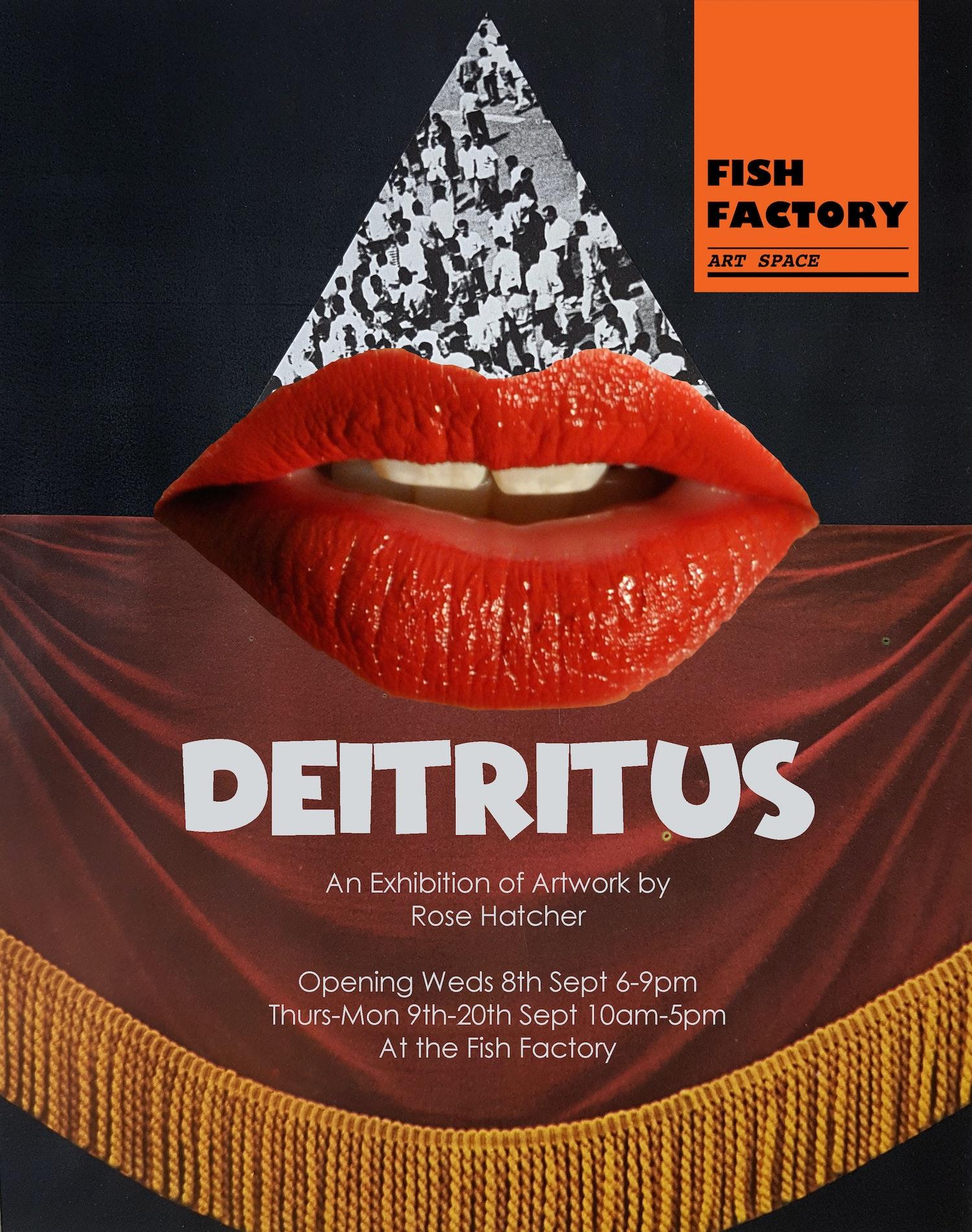 Deitritus poster copy