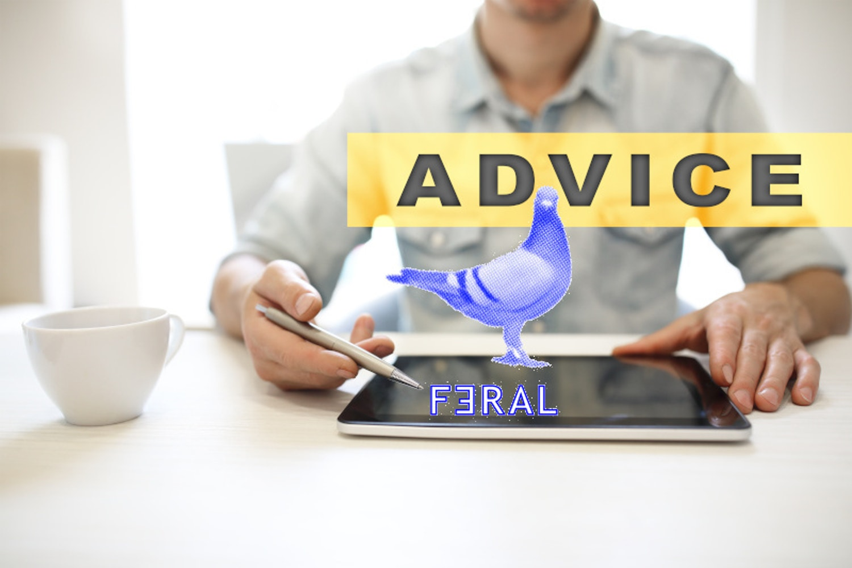 Business advice F