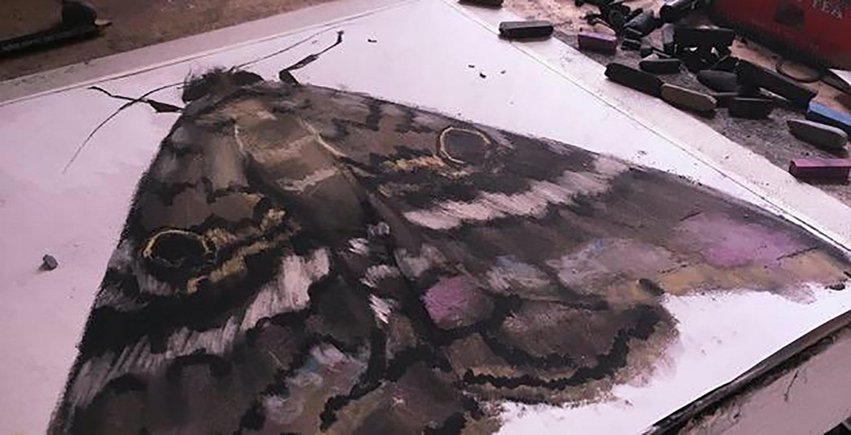 Thumbnail Draw Butterflieswithsoftpastel 1500x