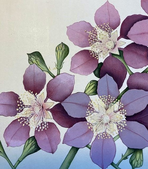 Flowers 4853c9a7 f6b2 4491 a730 6958346589a8 1500x