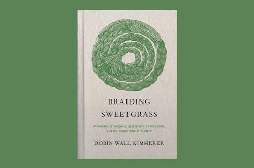 Braiding Sweetgrass image