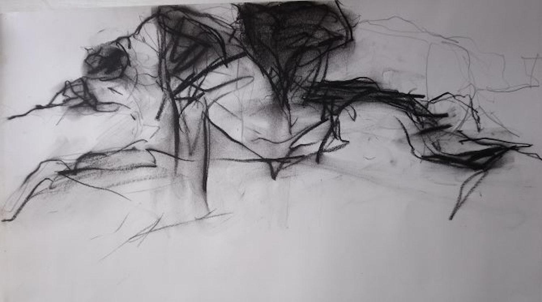 Drawing Laboratory