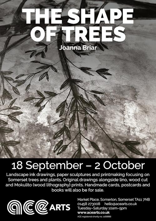 Trees jpeg